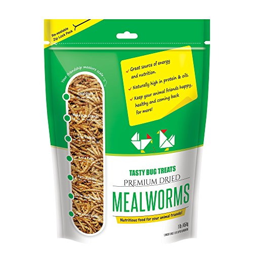 Mealworms - Premium Dried Mealworms (1 lb bag) byTasty Bug Treats (Meal Worms) (Hamster Premium Food)