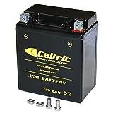 Caltric AGM BATTERY Fits HONDA CMX250C CMX250C2 CMX250X R...