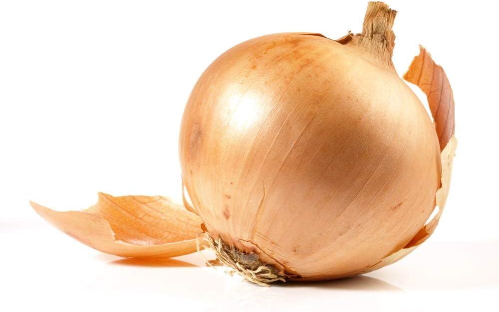 Walla Walla Sweet Spanish Onion Seeds, 300 Seeds Per Packet, Non GMO Seeds