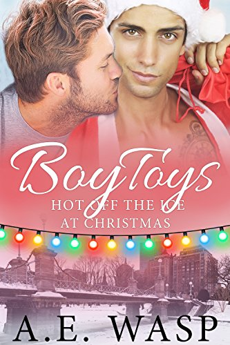 Boy Toys: Hot Off the Ice at Christmas by [Wasp, A. E. ]