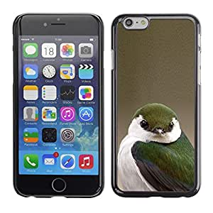 SKCASE Center / Funda Carcasa - Beige Blanco Verde Naturaleza;;;;;;;; - iPhone 6