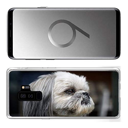 (Liili Samsung Galaxy S9 Plus Clear case Soft TPU Rubber Silicone Bumper Snap Cases IMAGE ID: 28931827 The face of a cute and newly groomed Shih Tzu dog staring intently off camera)