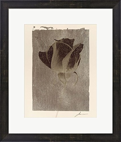 Silver Stem II by James Burghardt Framed Art Print Wall Picture, Espresso Brown Frame, 18 x 21 ()