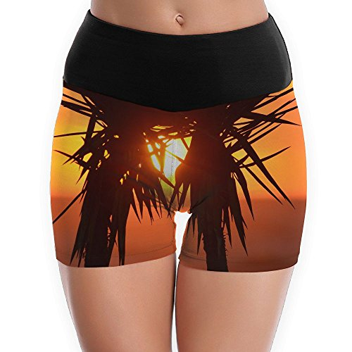 (Diosehuts Palm Trees Under The Dusk Women's Training Sports Running Yoga Shorts)