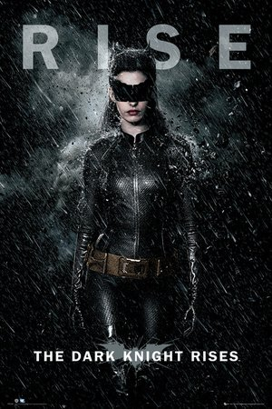 Batman Dark Knight Rises Catwoman Movie Poster Print 24 By 36]()