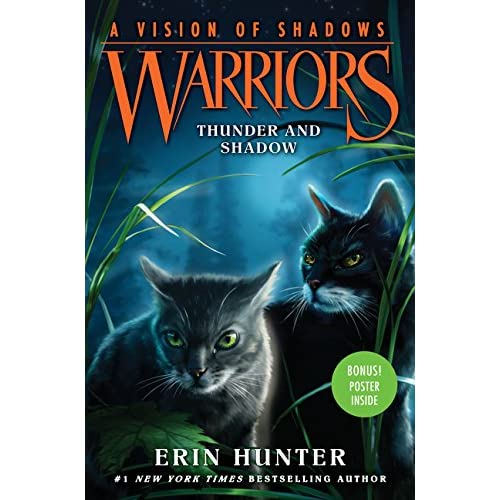 Warriors A Vision Of Shadows Raging Storm