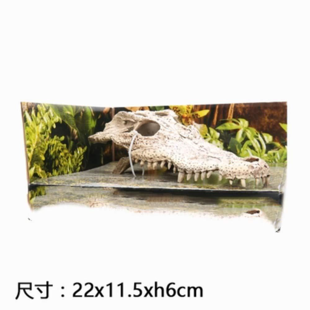 Crocodile skull JRTAN&Pet habitat Lizard Snake Spider Lair Simulated dinosaur skull sun back avoiding, large skull