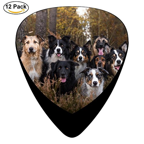 Animal Dog Pug Celluloid Guitar Picks 12 Pack Includes Thin,Medium,Heavy Gauges For Electric Acoustic Guitar ()