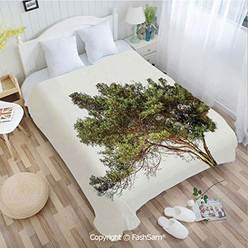 - PUTIEN Flannel Fleece Blanket with 3D Ancient Tree with Wide Branches Growth Forest Jungle Woods Garden Framework Lightweight for Adults(49Wx78L)