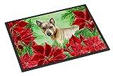 Caroline's Treasures Thai Ridgeback Poinsettias Doormat, 18'' x 27'', Multicolor
