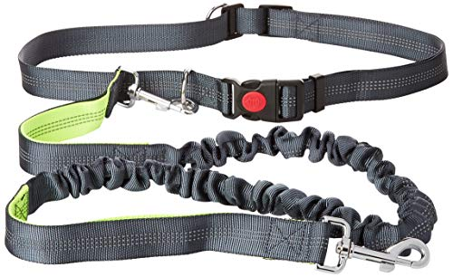 Petofo Hands-Free Dog Leash for Running, Walking, Hiking, Durable Dual-Handle Bungee Leash, Reflective Stitching, 4-Foot Long, Adjustable Waist Belt