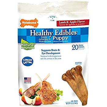Amazon.com : Nylabone Healthy Edibles Petite Lamb And