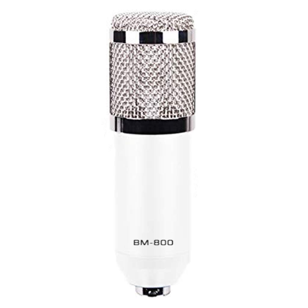 D DOLITY Professional Studio Broadcasting & Recording Microphone Mic Set White