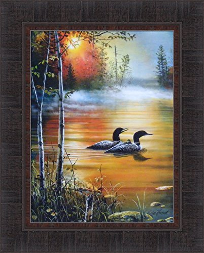 Family Outing by Jim Hansel 17x21 Lake Loons Loon Family Baby Framed Art Print Picture