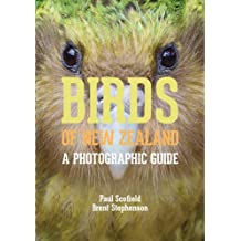 Birds of New Zealand: A Photographic Guide