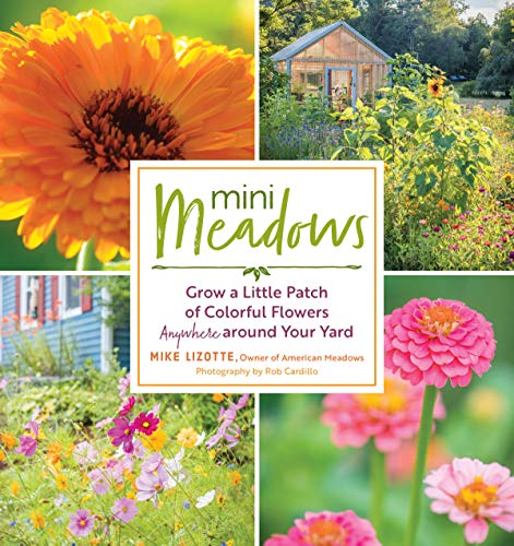 Book Cover: Mini Meadows: Grow a Little Patch of Colorful Flowers Anywhere around Your Yard