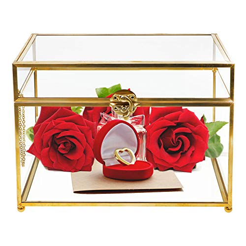 Wistwoxxon Decorative Boxes, Clear Glass Plant Terrarium Organizer with Gold Metal Frame, Tabletop Curio Case/Shadow Box for Wedding Receptions, Planter Holder,Gift & Display Box (Rectangle) from Wistwoxxon