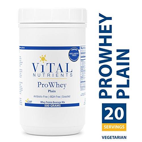 Vital Nutrients - ProWhey - Plain - Whey Protein Beverage Mix - Vegetarian - 500 Grams