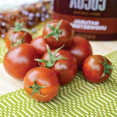 50 semi di pomodoro Sunchocola