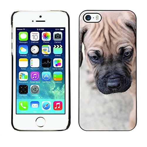 Premio Sottile Slim Cassa Custodia Case Cover Shell // F00015741 Chiot // Apple iPhone 5 5S 5G