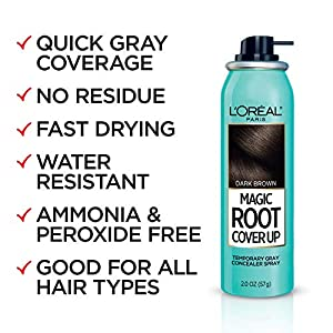 L'Oreal Paris Hair Color Root Cover Up Temporary Gray Concealer Spray, Black, 2 Ounce