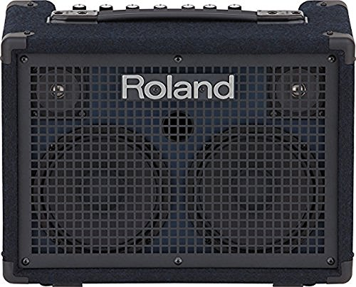 Roland Keyboard Amplifier (KC-220)