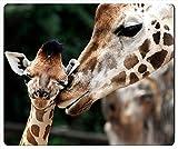 Knseva Giraffe Mouse Pad
