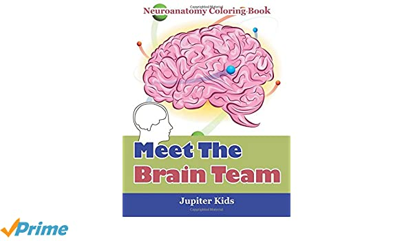 meet the brain team neuroanatomy coloring book jupiter kids 9781683052838 amazoncom books - Neuroanatomy Coloring Book