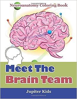 Meet The Brain Team: Neuroanatomy Coloring Book: Jupiter Kids ...