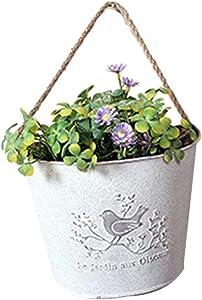 Tuuertge Metal/Plastic Hanging Planter Basket 2Pcs French Country Rustic White Shabby Chic Mini Metal Wall Hanging Planters Garden Flower Bucket Pots Hanger Planter (Color : White, Size : 9.518cm)