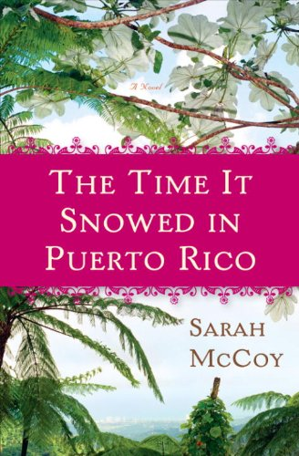 The Time It Snowed in Puerto Rico: A Novel cover