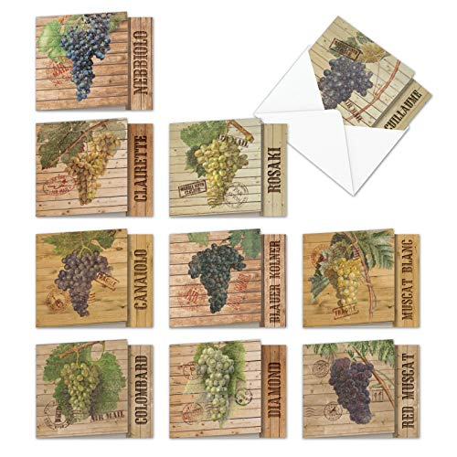 Through The Grapevine - 10 Blank Vintage Note Cards with Envelopes (4 x 5.12 Inch) - Boxed Assortment of All-Occasion Wine, Fruit Greeting Cards - Bulk All Occasion Notecard Set MQ4603OCB-B1x10