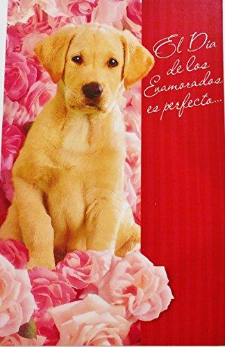 El Dia de los Enamorados es perfecto para decirte que mi amor por ti no tiene fin! - Romantic Valentine's Day / San Valentin Greeting Card in Spanish (Husband Wife Boyfriend Girlfriend)