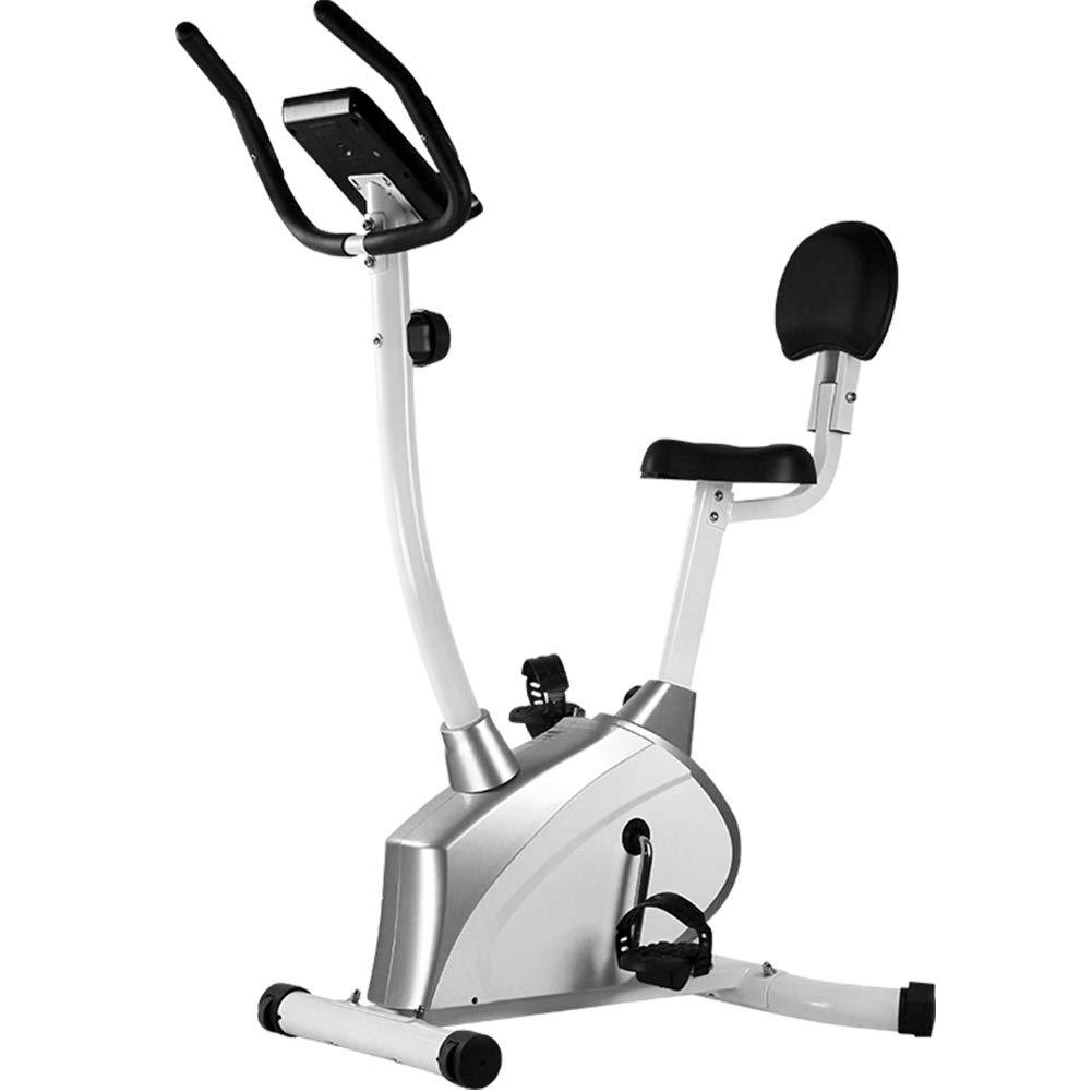 Warmth Supplies Bicicleta de Ejercicio, muda Fitness Bicicleta ...