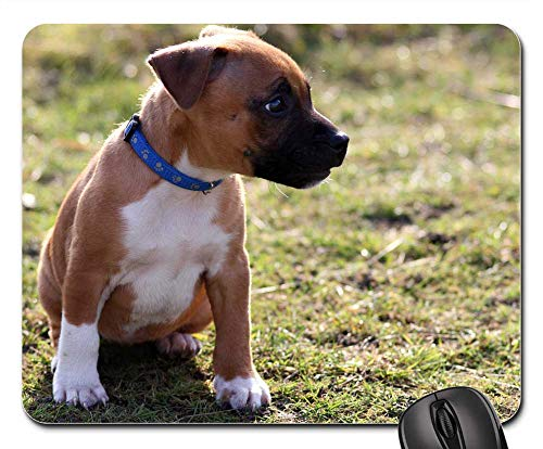 (Mouse Pads - Puppy Dog Staffordshire Bullterrier Pet Animal 2)