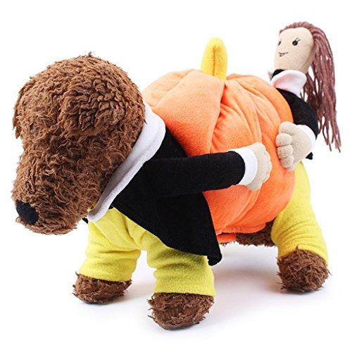 PetBoBo Pet Dog Cat Carrying Pumpkin Halloween Party Fancy Costume for Dog Cat Jacket Apparel New (Uniqe Halloween Costumes)