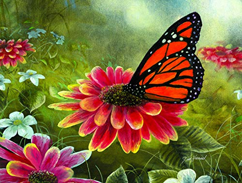 Sunsout 2019 Monarch Butterfly by Artist Jim Hansel 500 Piece Butterflies and Insects Jigsaw Puzzle ()