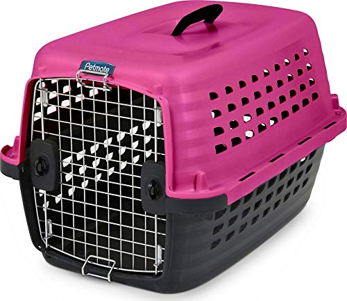 Petmate Compass Fashion Kennel Cat and Dog Kennel 4 Vibrant Colors 2 Sizes ()