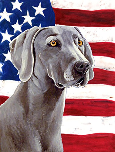 Caroline's Treasures LH9001GF USA American Flag with Weimaraner Flag, Small, Multicolor