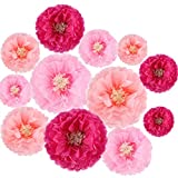 Paper Flowers Decorations,12 Pcs Tissue Paper Flower DIY Crafting for Wedding Backdrop Nursery Wall Baby Shower Decoration,Rose