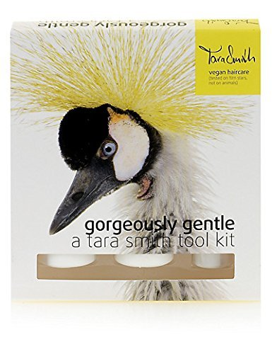 tara-smith-gorgeously-gentle-tool-kit-by-tara-smith