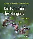 Die Evolution des Fliegens – Ein Fotoshooting