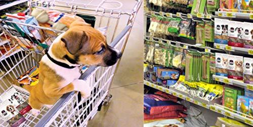 Dr. Dalton's Premium Dog Treats (Chicken, 3oz.)