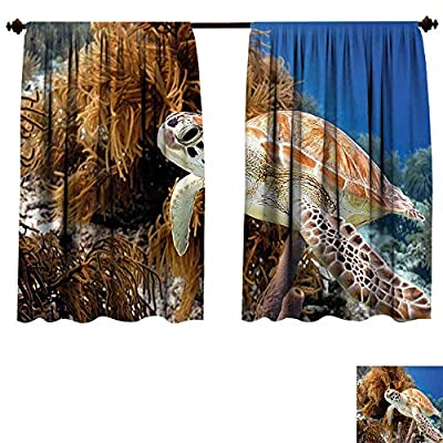 Qianhe-HOME Blackout Draperies Turtle Coral Reef and Sea Turtle Close Up Photo Bonaire Island Waters Maritime Light Coffee Brown Blue Darkening Blackout Drapes for Bedroom (W55 x L39 -Inch 2 Panels)