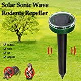Ultrasonic Solar Mole Repellent, Powered Electric Mouse Insect Review and Comparison