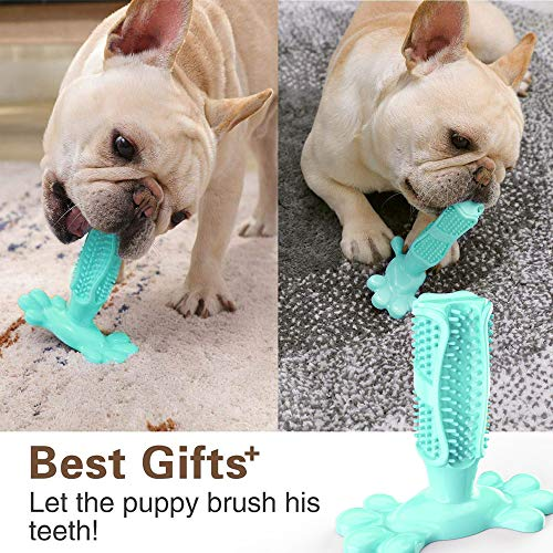dasaba Dog Chew Toys for Aggressive Chewers,Teeth Cleaning Chewing Toys for Small & Medium Large Breed Dogs Durable Non-Toxic Elastic Rubber Pets Toothbrush Dog Toys
