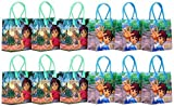 "Go Diego Go ! Party Favor Goodie Gift Bag - 6"" Small Size (12 Packs)"