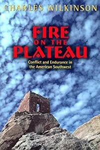 Fire on the Plateau: Conflict And Endurance In The American Southwest by Charles F. Wilkinson (1999-04-01)