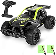 MISSLFJY Remote Control Car High Speed RC Truck Hobby Racing Car Buggy Vehicle 2.4 GHZ 1:22 Scale RC Cars, Gre