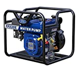 Ford FPX 30E 3'' Full Load Water Pump, 3''